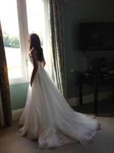 Rebecca's Fairy Tale Gown…